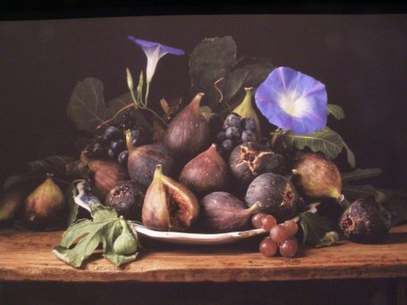 """Figs and Morning Glories"""